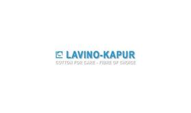 Lavino Kapur
