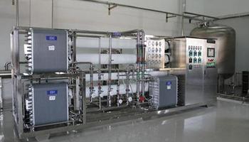 Electro Di Ionization