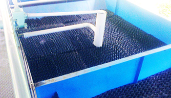 Submerged Aerated Fixed Film Bio Reactor - SAFF